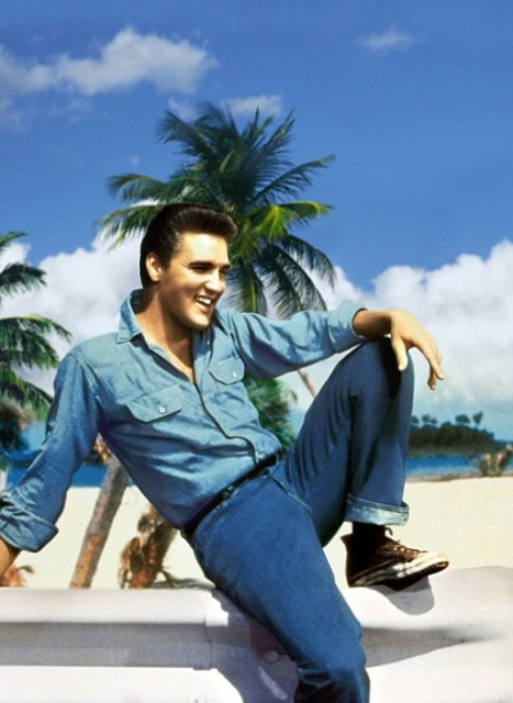 Elvis-Presley-511x700_zps7e72d94b